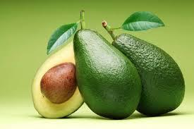 El Fruto del Aguacate
